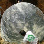 gryzoń hodowany dla futra
